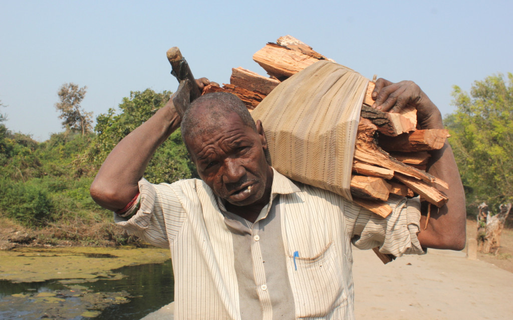 Siddi man carries firewood, India.