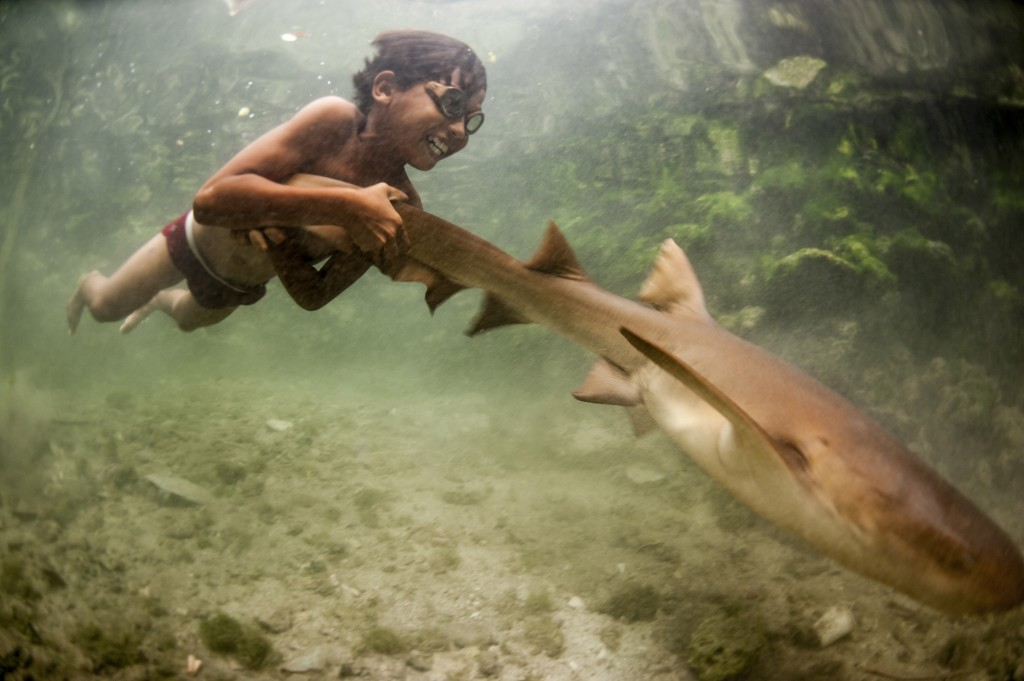 Whilst few young Bajau are now born on boats, the ocean is still very much their playground. Here Enal plays with his pet shark. Wangi Wangi, Indonesia.
