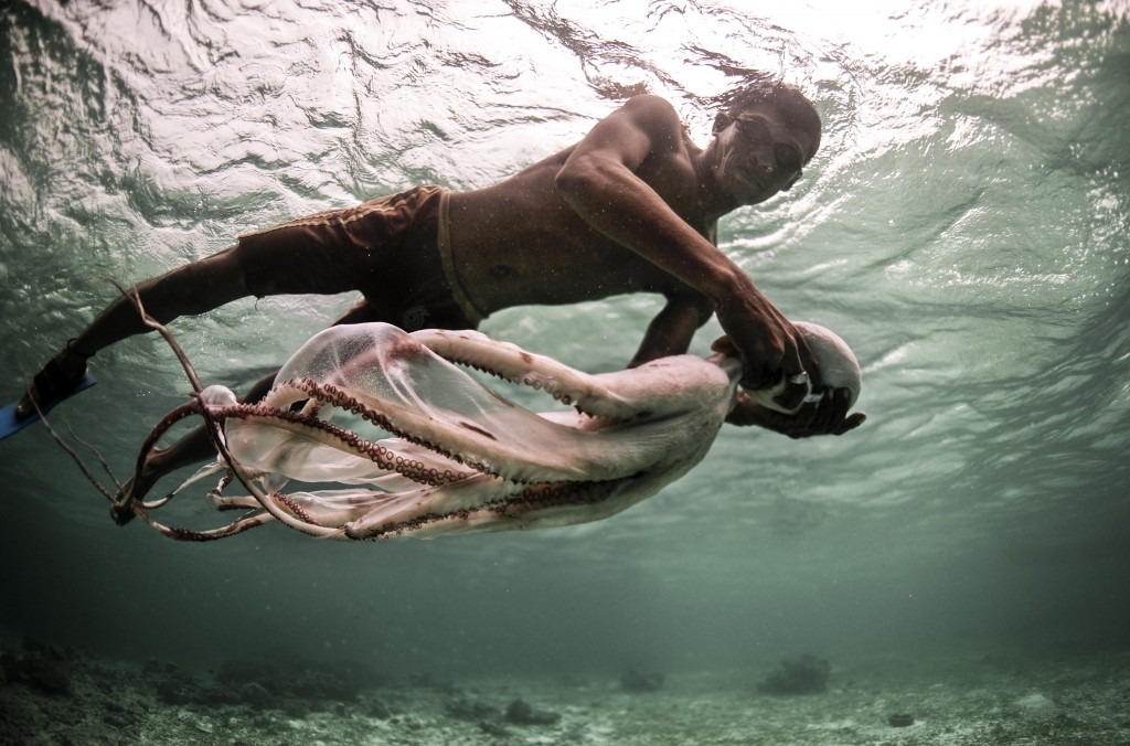 Jatmin, an octopus specialist, carries his freshly speared catch back to his boat in the shallow waters off the coast of Sulawesi, Indonesia.